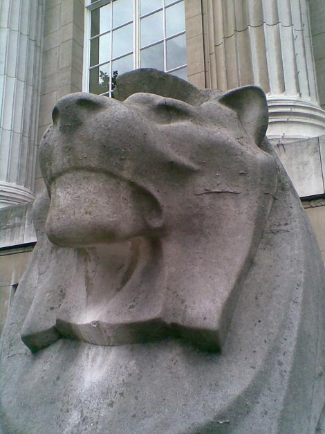 Lion outside British Museum