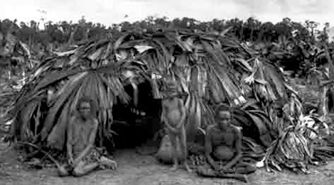 Dome hut clad with blady grass that has been attached to the frame with lawyer cane. It was constructed in the North-east Rainforest Region near the Tully River between 1893 and 1910
